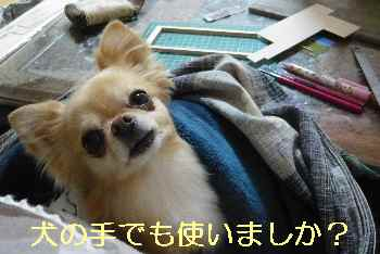 blog2013033102.jpg