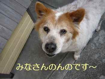 blog2013040101.jpg