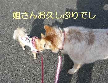 blog2013040102.jpg