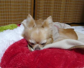 blog2013041003.jpg
