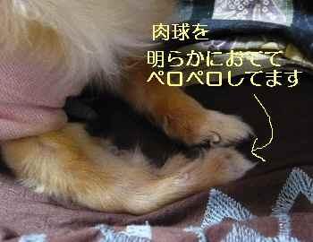 blog2013041505.jpg