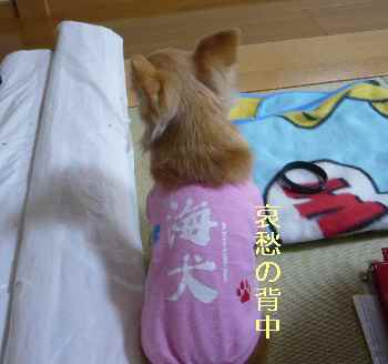 blog2013041802.jpg