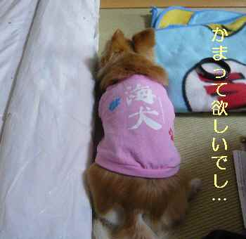 blog2013041803.jpg