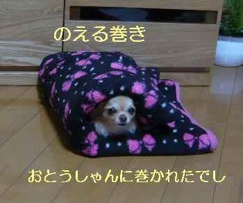 blog2013042404.jpg