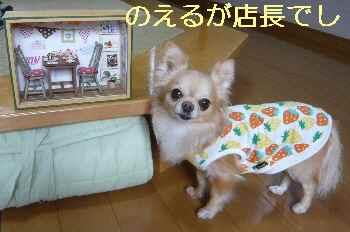 blog20130429012.jpg