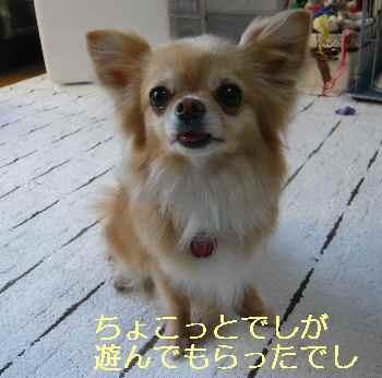 blog2013050202.jpg