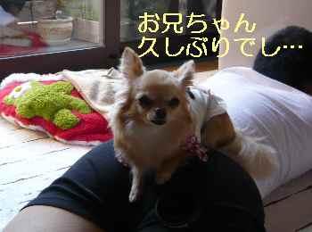 blog2013050505.jpg