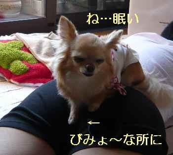 blog2013050506.jpg