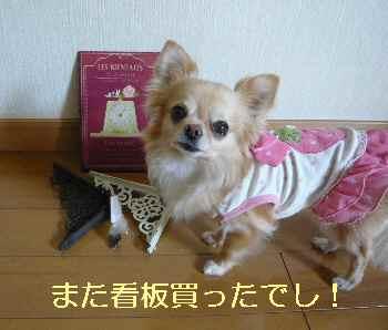 blog2013050801.jpg
