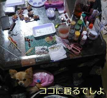 blog2013051003.jpg