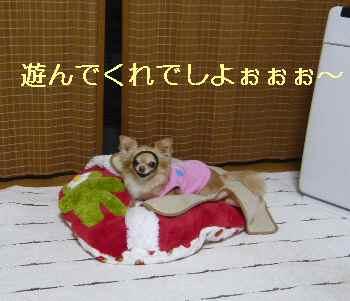 blog2013051205.jpg