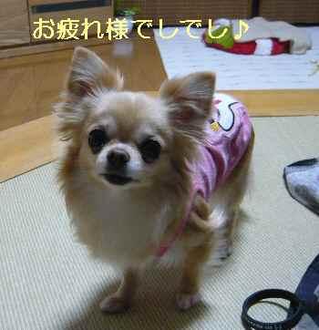 blog2013051901.jpg