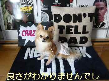 blog2013052109.jpg