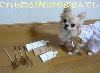blog2013052110.jpg