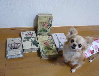 blog2013052505.jpg