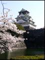 13-04-06俳句会