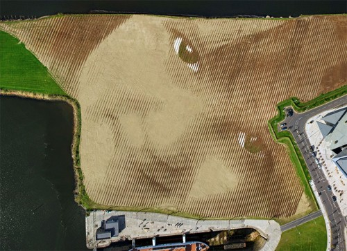 Wish-A-Gigantic-11-Acre-Portrait-by-Jorge-Rodriguez-Gerada-1-500x363.jpg