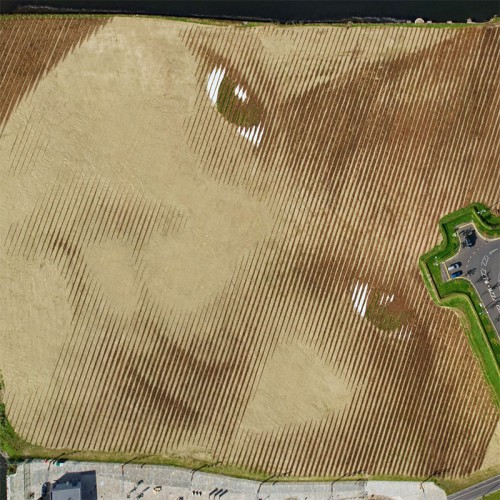 Wish-A-Gigantic-11-Acre-Portrait-by-Jorge-Rodriguez-Gerada-6-500x500.jpg