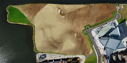 Wish-A-Gigantic-11-Acre-Portrait-by-Jorge-Rodriguez-Gerada-7-500x250.jpg