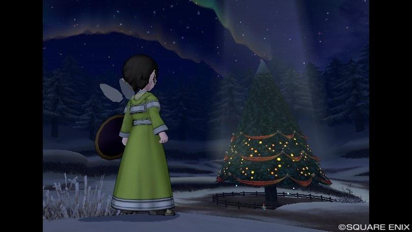 モミの木3