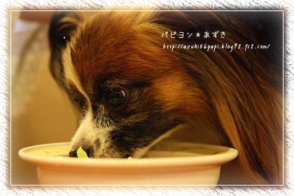 20120922_IMG_3681.jpg
