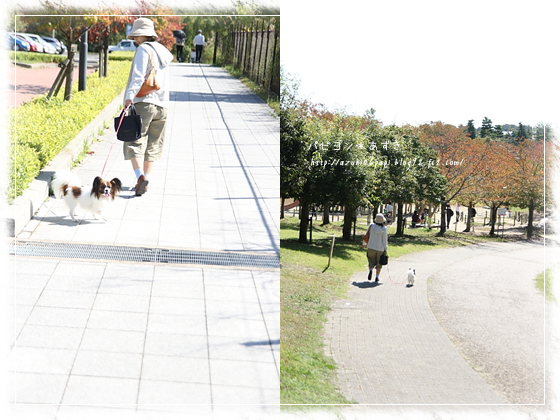 20121013_IMG_3785.jpg