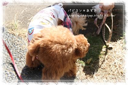 20121020_IMG_3888.jpg