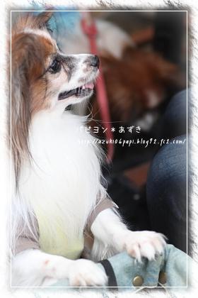 20121104_IMG_4204.jpg