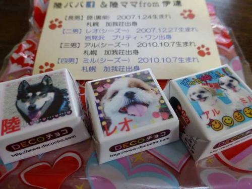 P1130181+AZUKI.jpg