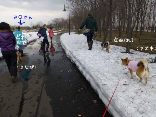 P1130342+AZUKI1.jpg