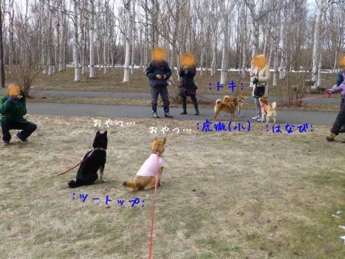 P1130432+AZUKII.jpg