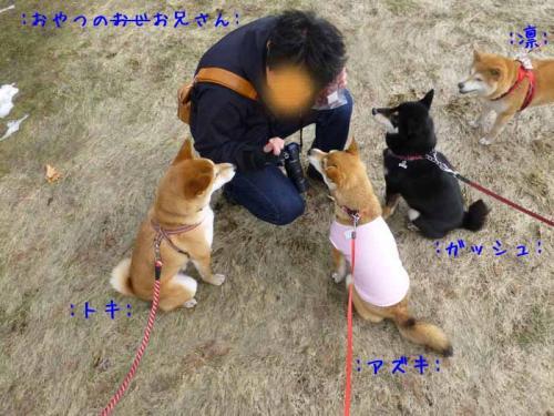 P1130441+AZUKI.jpg
