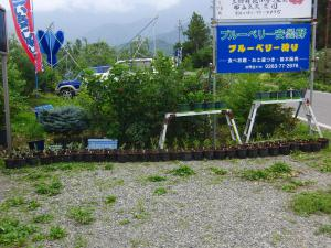 s-20120724CIMG5076.jpg