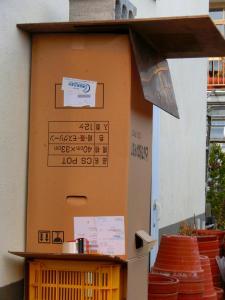 s-20121115CIMG0005.jpg