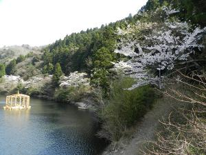 07kanayama1.jpg
