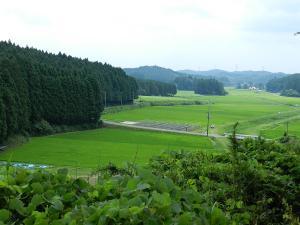 20120716-40.jpg