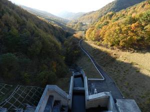 20121103yoji05.jpg