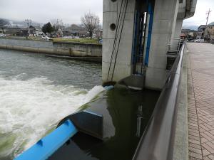 FG-kamaguchi04.jpg