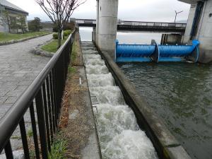 FG-kamaguchi07.jpg