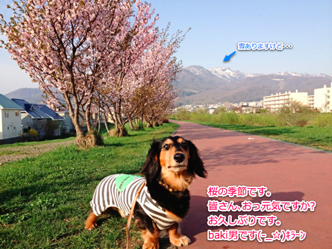 IMG_3302-1.jpg