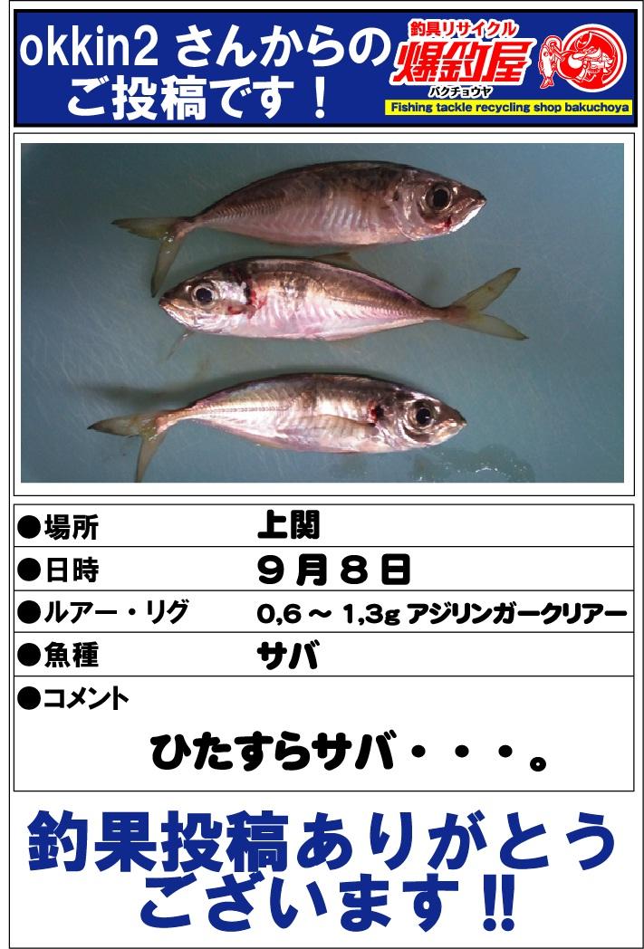 okkin2さん2012091502