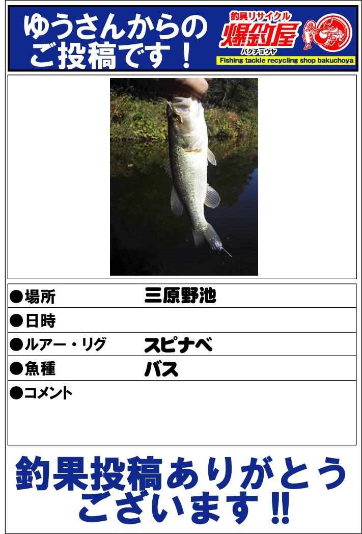 ゆうさん20121121