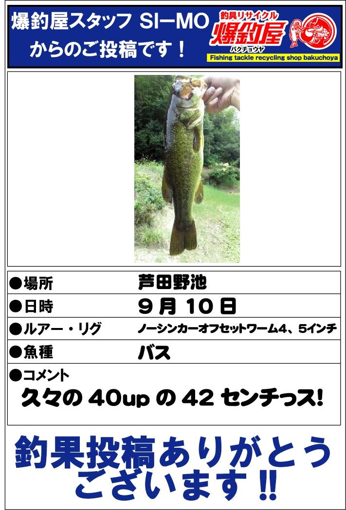SI-MO20120915.jpg