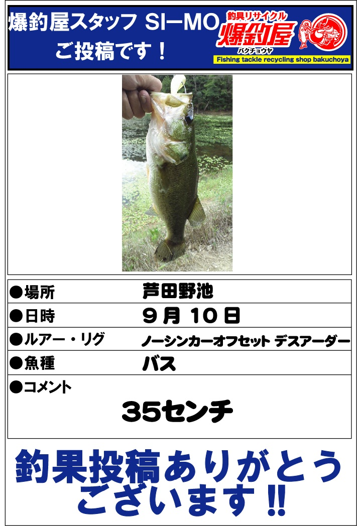 Si-MO20120920.jpg