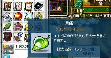 Maple130312_014513.jpg
