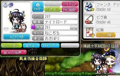 Maple130416_214824.jpg