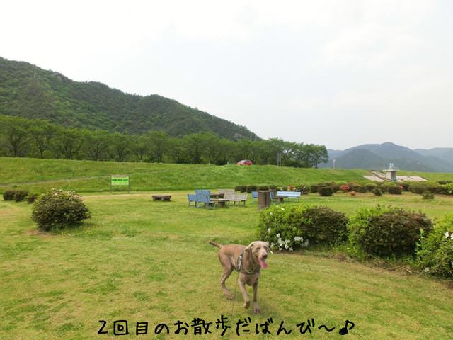 20120509005.jpg