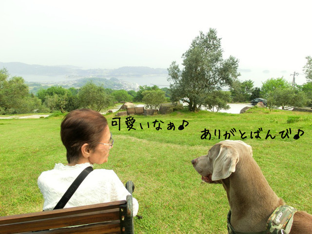 20120512011.jpg
