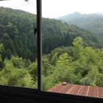 窓の外は大自然