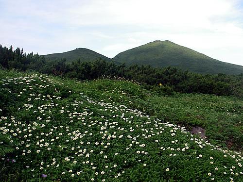 hitokoma2011-821-6.jpg
